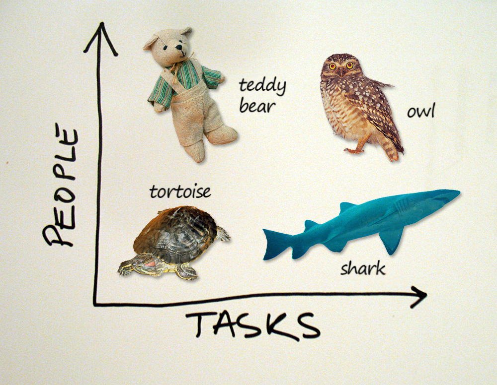 Meeting personas - People VS Tasks - teddy bear, owl, tortoise, shark